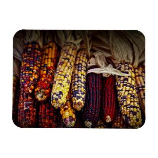 Indian corn vinyl magnet