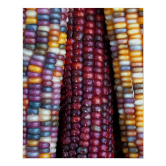 Indian Corn Print by Kim Rowlett