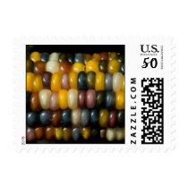 Indian corn Stamp