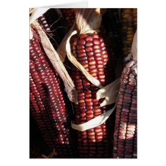 Indian Corn, Thanksgiving Card