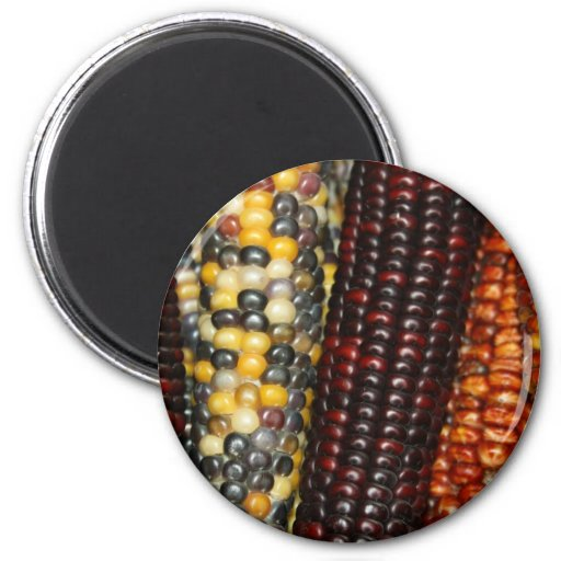 Indian Corn Variety Magnet