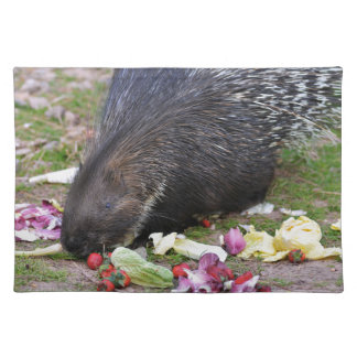 Indian Crested Porcupine eating vegetables Placemats