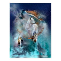 Indian dreamcatcher and ethnic tribal head wolf postcard