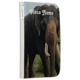 Indian Elephant Kindle 3 Covers