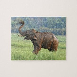 Indian Elephant dust bathing,Corbett National Puzzle