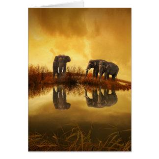 Indian Elephant Family Card