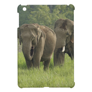 Indian Elephant family coming out of Case For The iPad Mini
