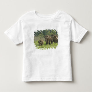 Indian Elephant family coming out of T-shirt