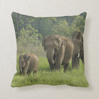 Indian Elephant family coming out of Throw Pillow