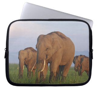 Indian Elephants in the grassland,Corbett Laptop Sleeve