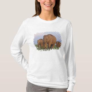 Indian Elephants in the grassland,Corbett T-Shirt