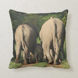 Indian Elephants on the jungle track,Corbett Throw Pillow