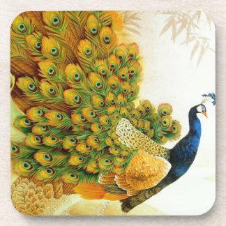 Indian Golden Peafowl Coaster
