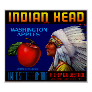 Indian Head Posters