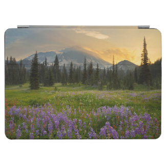 Indian Henry's Hunting Ground at sunrise iPad Air Cover