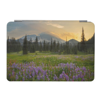 Indian Henry's Hunting Ground at sunrise iPad Mini Cover
