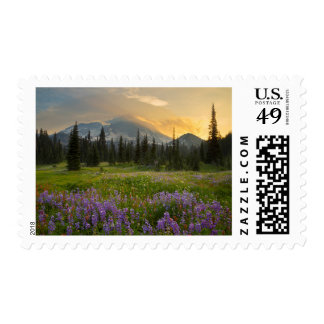 Indian Henry's Hunting Ground at sunrise Postage