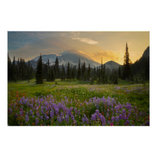 Indian Henry's Hunting Ground at sunrise Poster