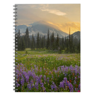 Indian Henry's Hunting Ground at sunrise Spiral Notebook