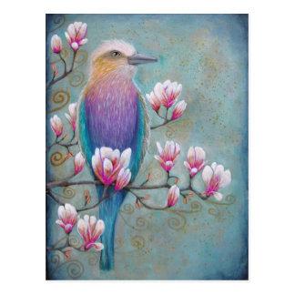 Indian Holi Bird on Magnolia Tree Postcard