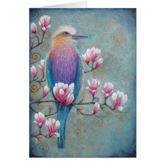 Indian Holi India Bird Postcard