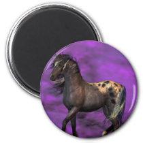 Indian Horse Magnet
