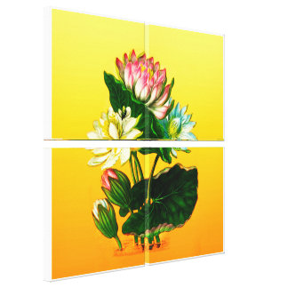 Indian Lotus Canvas Print