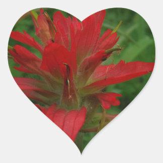 Indian paint brush heart sticker