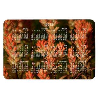 Indian Paintbrush; 2013 Calendar Magnet