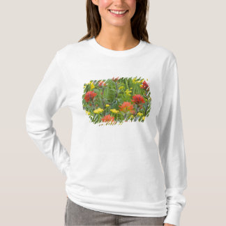 Indian paintbrush and biscuitroot wildflowers T-Shirt