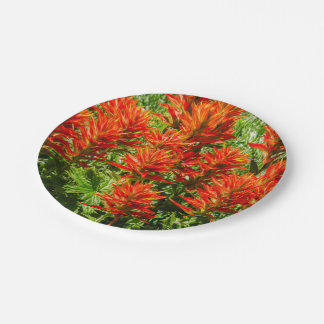 Indian paintbrush (Castilleja) - Wildflowers Paper Plate