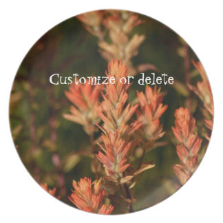 Indian Paintbrush; Customizable Plate