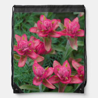 Indian Paintbrush Drawstring Bag