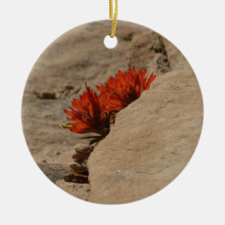 Indian Paintbrush in Rocks Nature Wildflower Ceramic Ornament