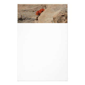 Indian Paintbrush in Rocks Nature Wildflower Stationery