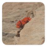 Indian Paintbrush in Rocks Sticker