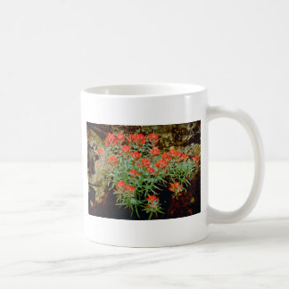 Indian Paintbrush in Zion National Park, Utah Red Classic White Coffee Mug