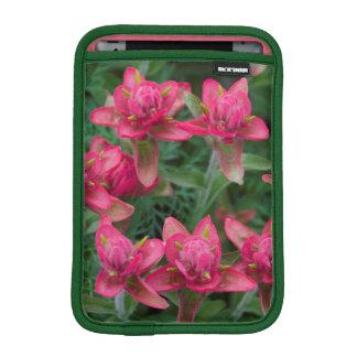 Indian Paintbrush iPad Mini Sleeves