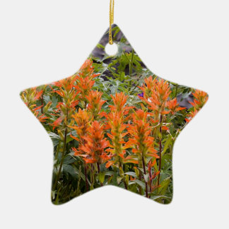 Indian Paintbrush Patch Ceramic Ornament