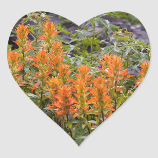 Indian Paintbrush Patch Heart Sticker