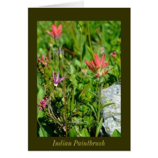 Indian Paintbrush Stationery Note Card