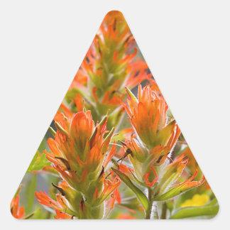 Indian Paintbrush Triangle Sticker