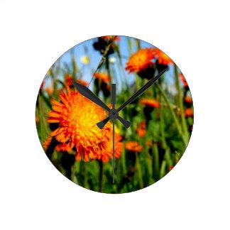 Indian Paintbrush Wildflower Round Clock
