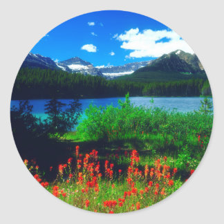 Indian Paintbrush Wildflowers Classic Round Sticker