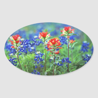 Indian Paintbrushes and Bluebonnets Oval Sticker