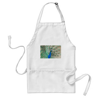 Indian Peacock Adult Apron