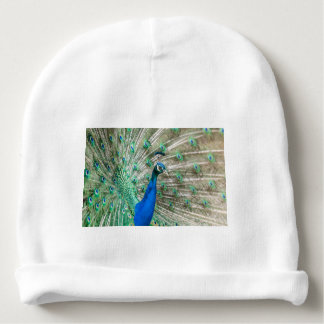 Indian Peacock Baby Beanie