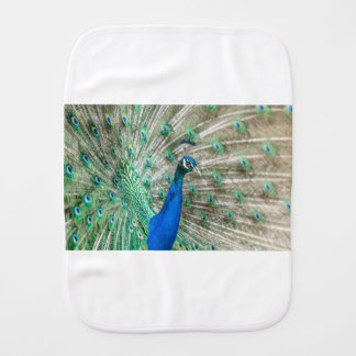 Indian Peacock Baby Burp Cloth