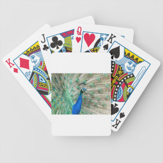 Indian Peacock Bicycle Playing Cards