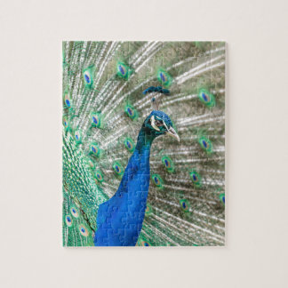 Indian Peacock Jigsaw Puzzle